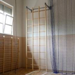 Tripartite gymnastic lattice ladder